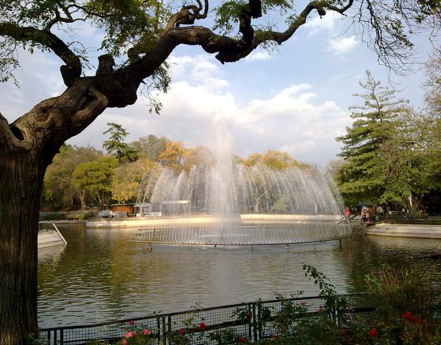 Yıldız Parkı, 2 décembre 2012